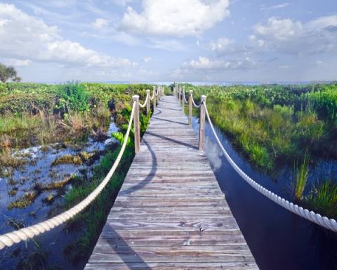 Boardwalk to Ocean
