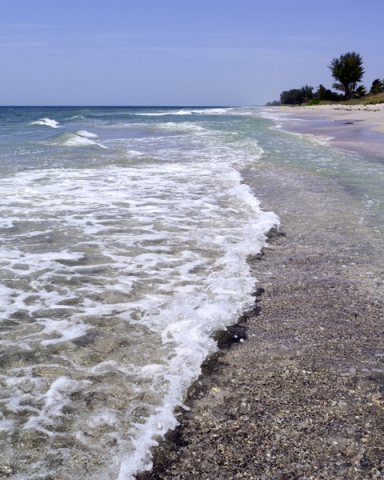 Unrelenting Waves