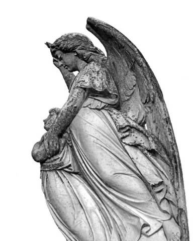 On An Angels Wing